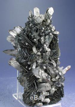 OUR FINEST HEMATITE ROSES w GROWTH INTERFERENCE QUARTZ CRYSTALS, GUANGDONG CHINA